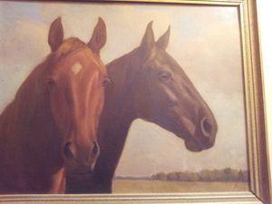 Pretty Horses Heads
