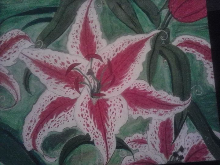 the orchid Lilly - C.Watkins Originals