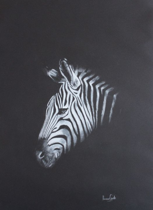 Zebra - JBayArt