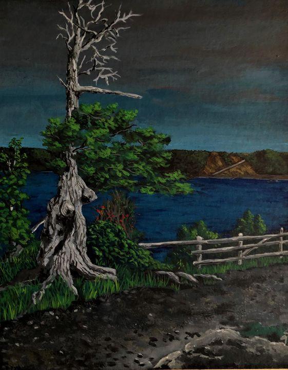 The Old Tree - Scott greene