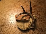 Antler and stone 3