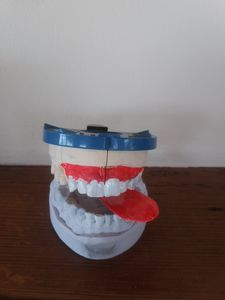 Teeth - Atmo