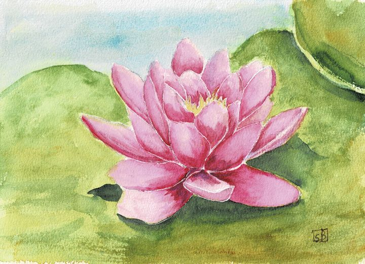 Water Lily - Susan Burns