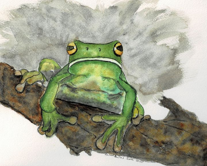 Frog on a Log - Susan Burns