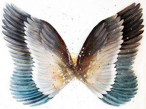 Тhe wings of freedom