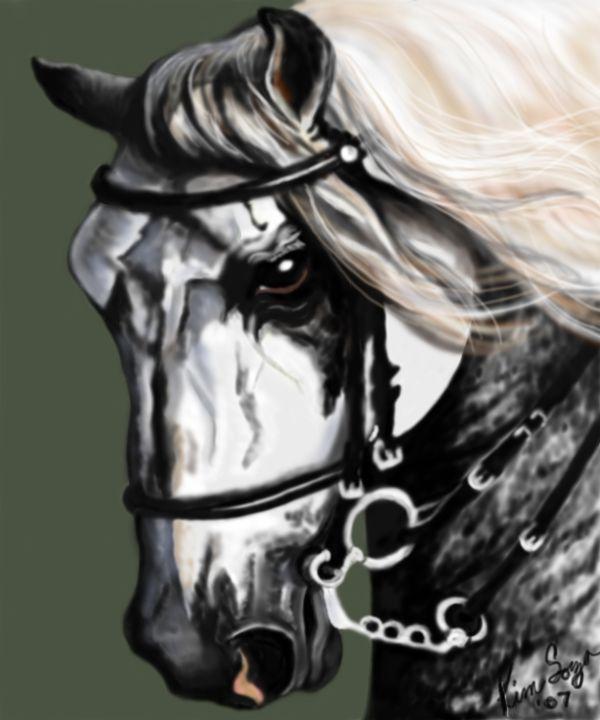 Andalusian Stallion - Kim Souza Artist