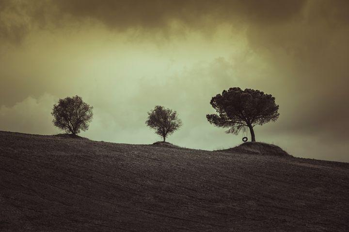 Tree swing - Michal Jesensky