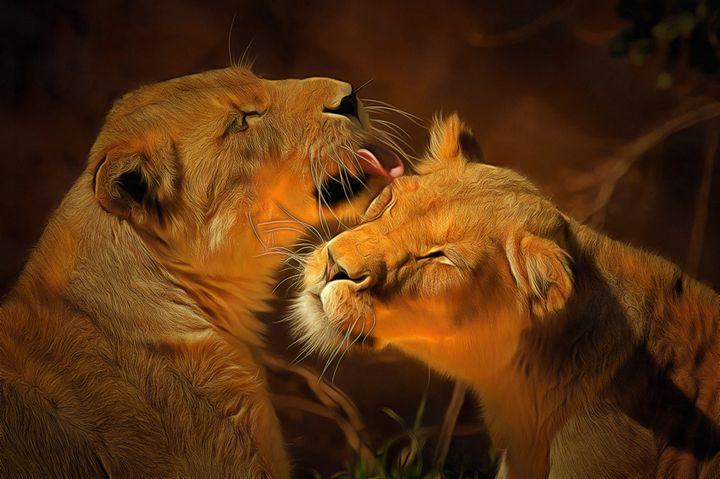 Lionesses - Alan Carson
