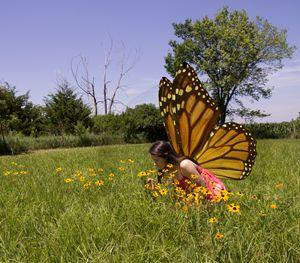 Fairy in a Field - Sadera Nye