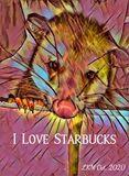 Starbucks Opossum Rambo