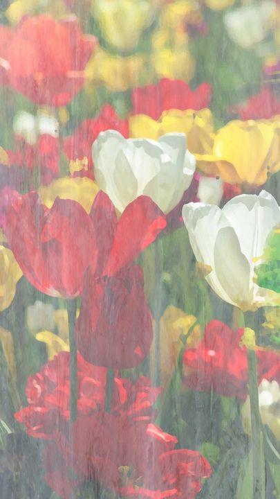 Exotic Beautiful Garden of Flowers - Castle Design Graphics
