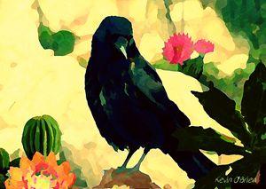 Desert Crow - KEVIN OBRIEN