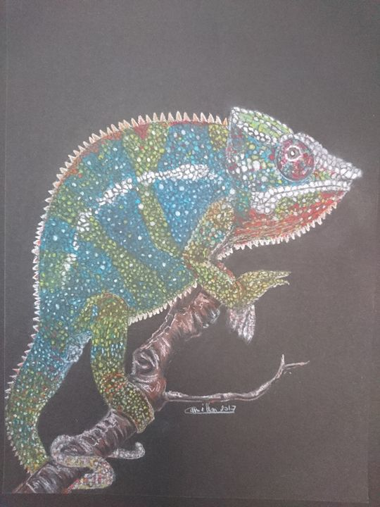 The Chameleon - The Chameleon