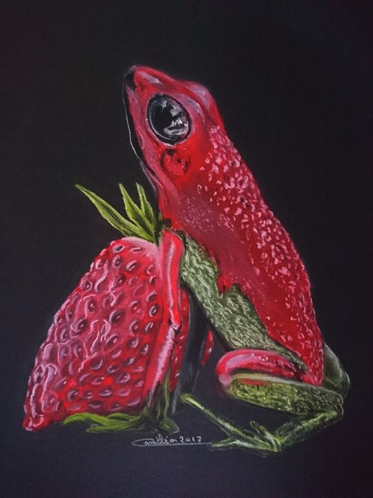 strawberry frog - The Chameleon