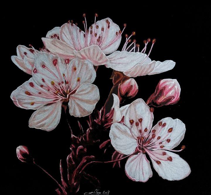 cherry bloomsom - The Chameleon