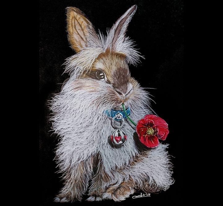 bunny - The Chameleon