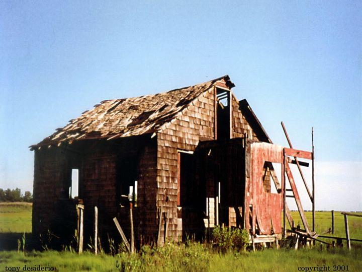The shack 2001 - Lbi Artist Tony Desiderio
