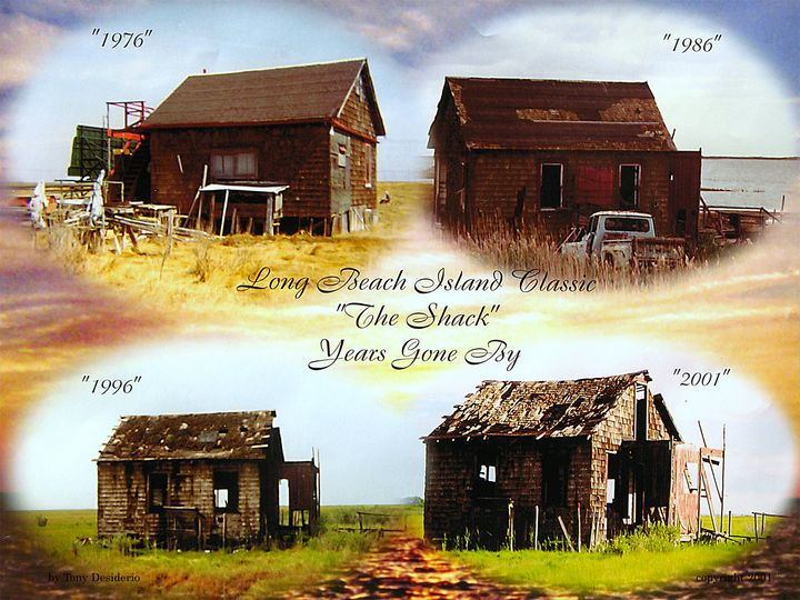 The Shack Years Gone By - Lbi Artist Tony Desiderio