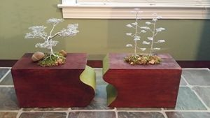 Wire Bonsai/Red Woods with cedar bas