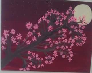 Cherry Blossoms - Lucella Thetis