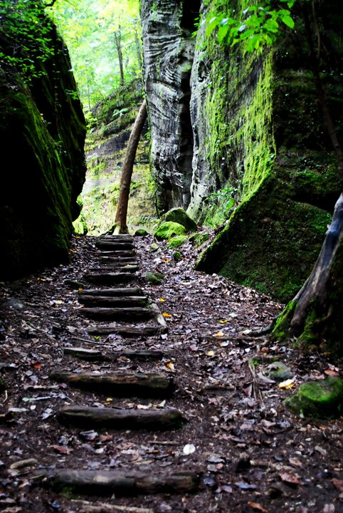 Follow The Trail - Kelly