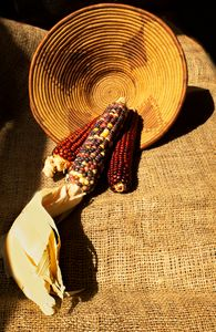 Indian Corn and Basket - helen geld