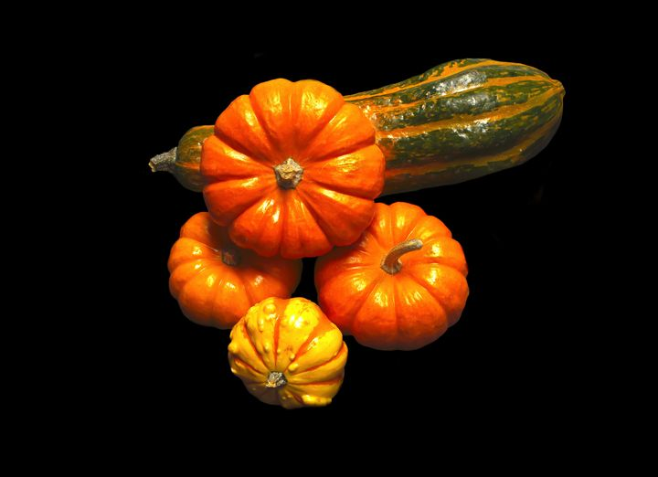 Mini Pumpkins and Gourds - helen geld