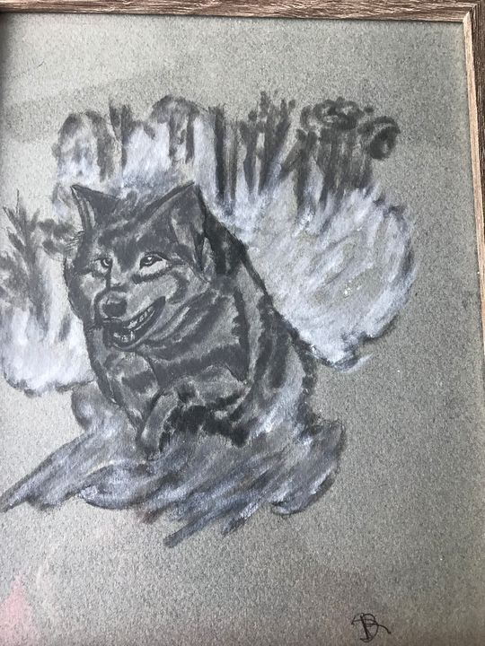 Wild wolf charcoal picture - Love of nature