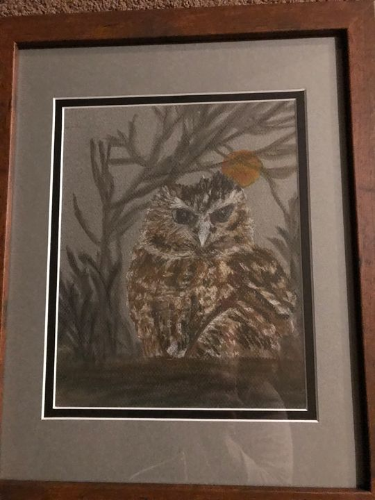 Pastel owl picture hand drawn - Love of nature