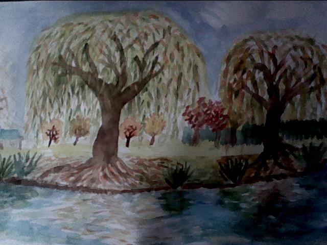 Willows - john allison