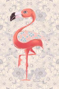 Flamingo - MyInspiracle