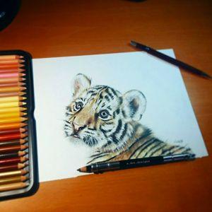 """Baby Tiger Original (10x7"""")"""