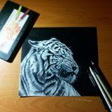White Tiger (Original)