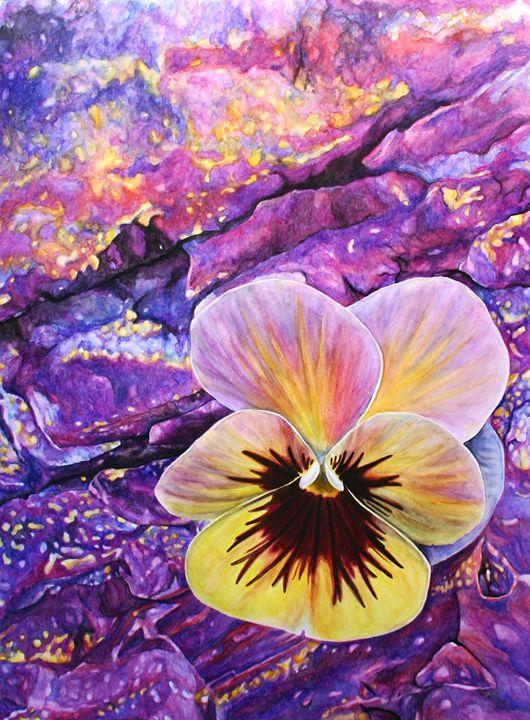 Pansy Blossom - Kayla Coates