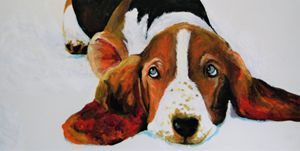 Hound - Hally Shaw Art