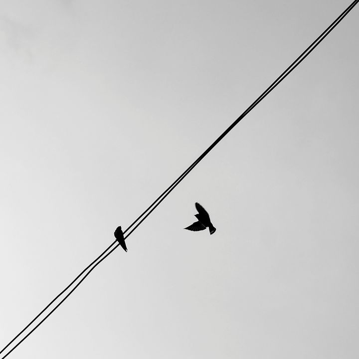 Minimal 8 - HarryHazari Photography