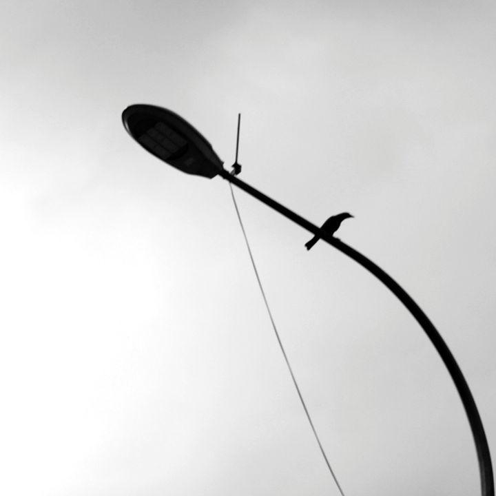 Minimal VII - HarryHazari Photography
