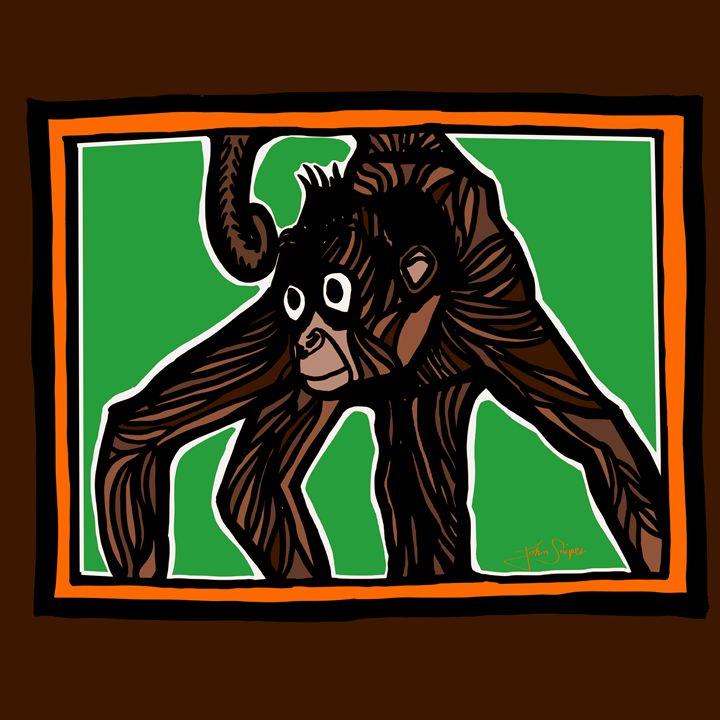 Spider Monkey - John Snipes