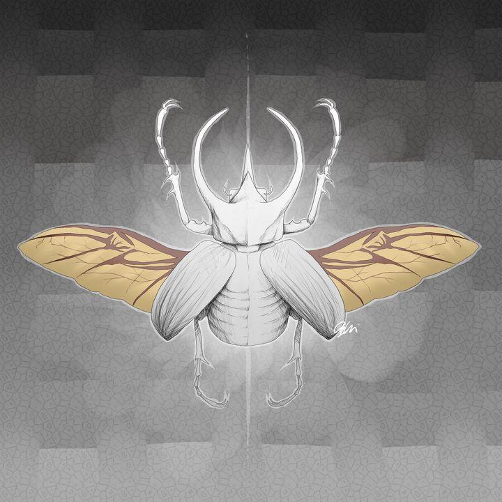 Beetle - 1XWarrior