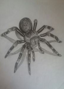 Spider 3d pencil drawing - Theju Arts