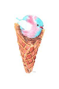 Transgender Pride Ice Cream Bellbird