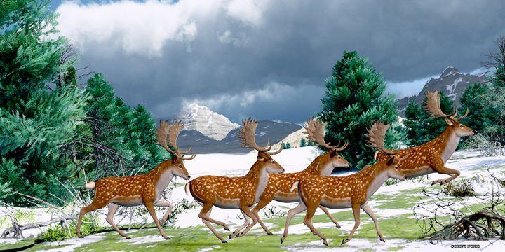 Fallow Deer Winter - Corey Ford Gallery LLC