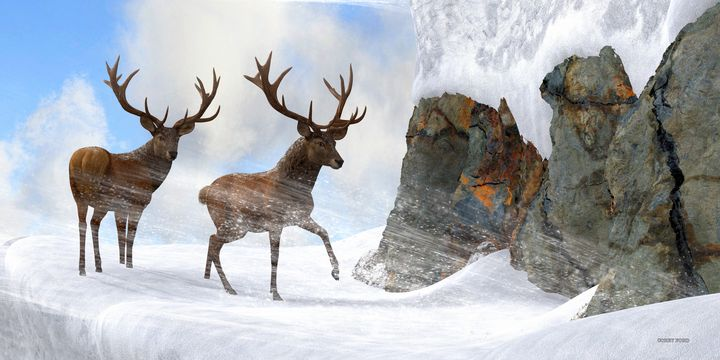 Red Stag Mountain Pass - Corey Ford Gallery LLC