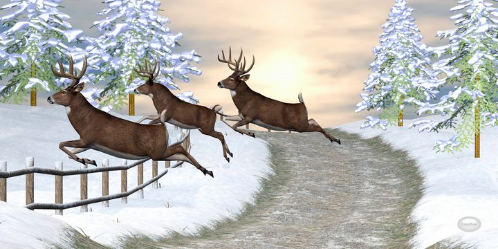 Whitetail Deer Jumping Fence - Corey Ford Gallery LLC