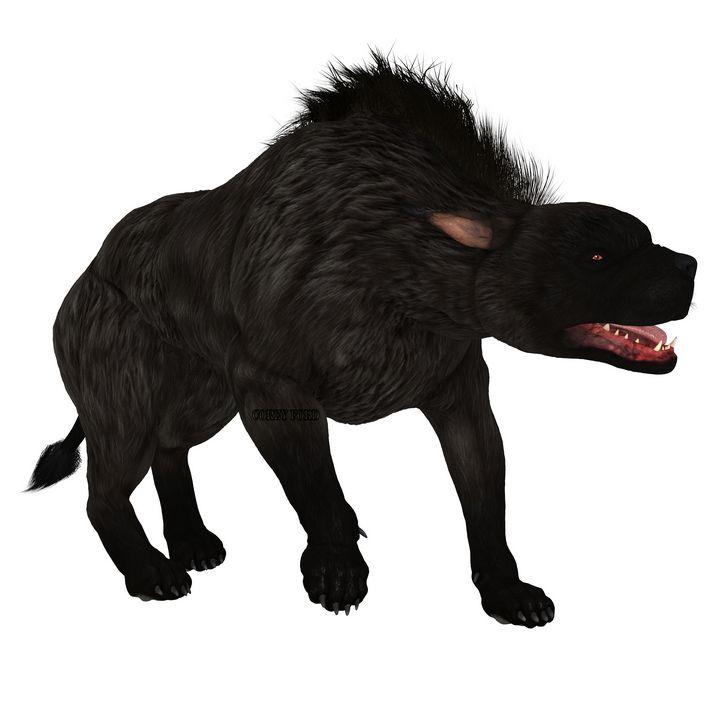 Black Warhound Walking - Corey Ford Gallery LLC