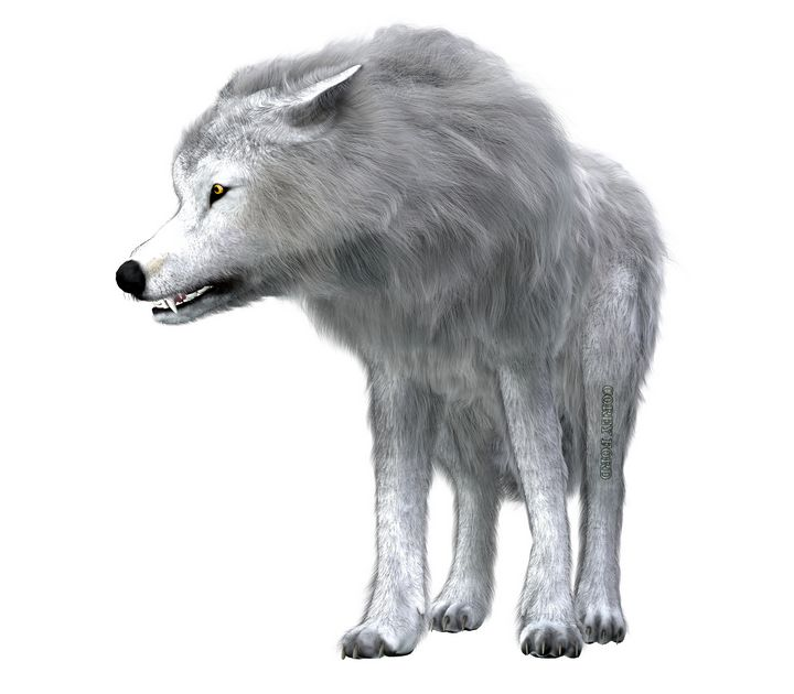 Dire Wolf Pack Leader - Corey Ford Gallery LLC