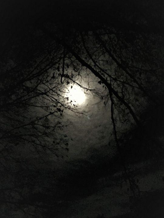 Harvest Moon - SLPeders