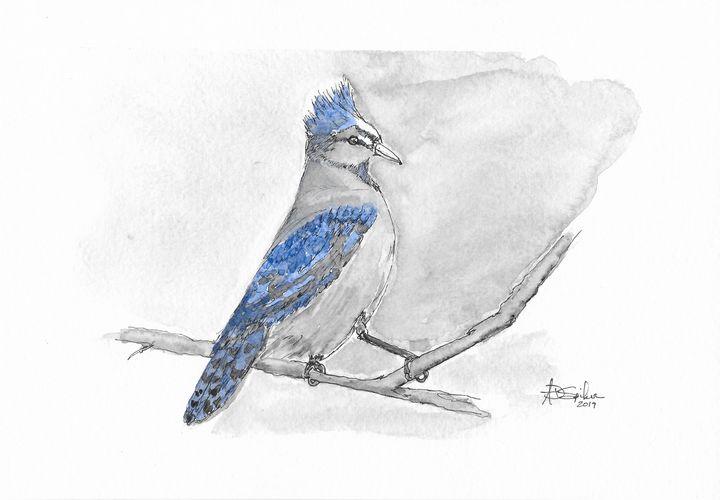 First Bird - Adam Spiker