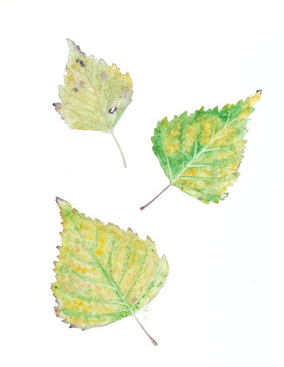 Birch leaves - Art_Loo