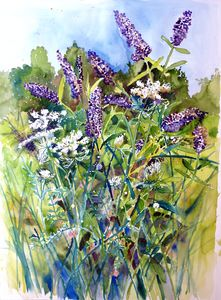 Butterfly Bush